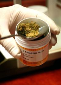 cannabismedikamente